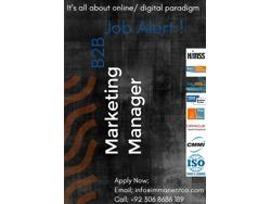 B2B-Marketing Team Manager
