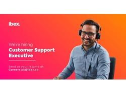 Customer Support Executive-Domestic